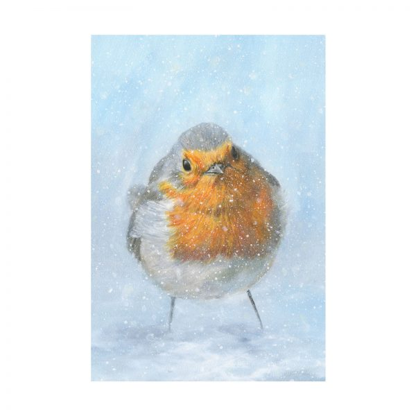 292RobinRedBreastPrint