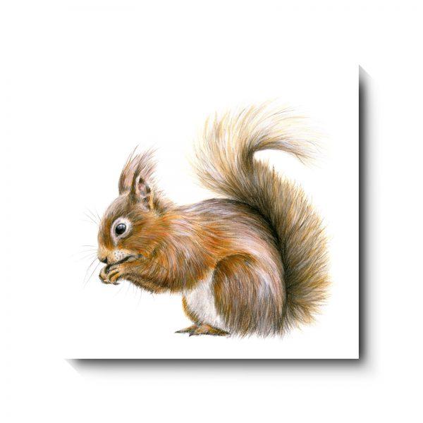 362SquirrelAwayCanvas
