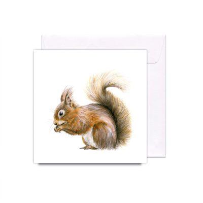 362SquirrelAwayCard