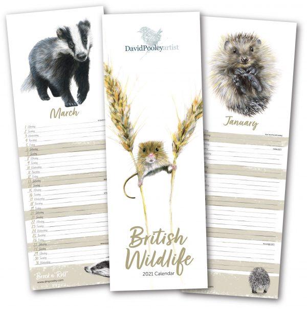 2021 British Wildlife Calendar