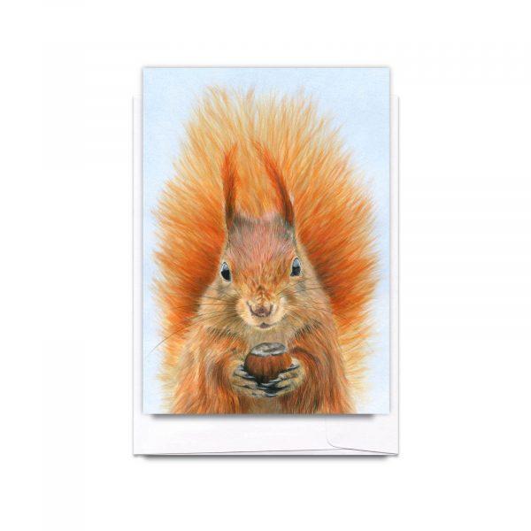 387RedSquirrelCard