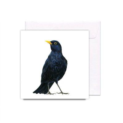 408BlackbirdCard