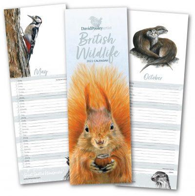 2022 British Wildlife Calendar